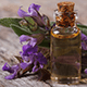 7 Benefits Sage Essential Oil Provides For Your Health