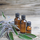 7 Medicinal Uses For Sage Essential Oil